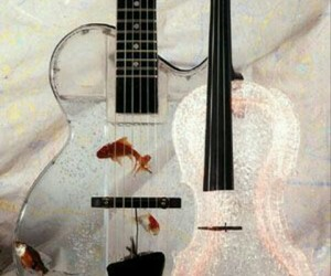 fish, guitar, and violin image