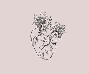 background, flower, and heart image