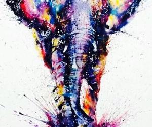 art, elephant, and animal image