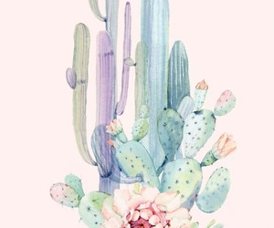 art, cactus, and illustration image