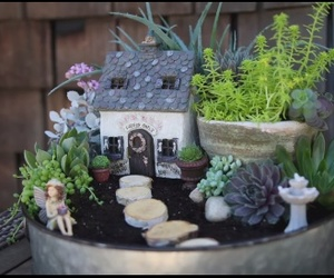 fairy, succulents, and garden image