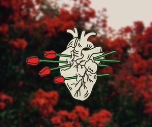heart, wallpaper, and aesthetic image