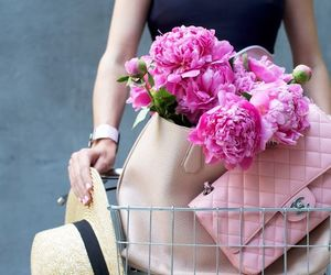 fashion, flowers, and atlantic pacific image