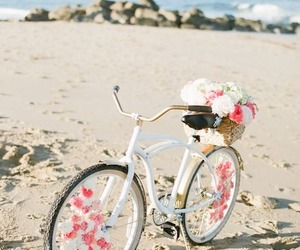 beach, flowers, and bike image