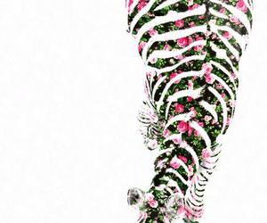 animal, art, and fashion image