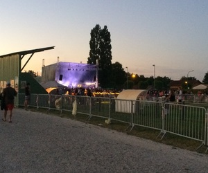festival, live, and music image
