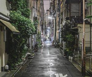 japan, japanese, and beauty image