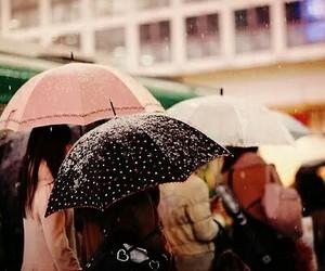 aesthetic, rain, and autumn image