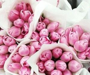 beautiful, pink, and pinky image