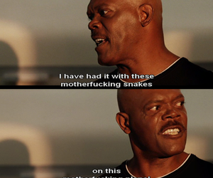 funny, movie, and snakes image