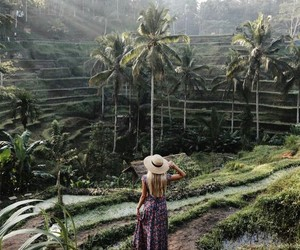 bali, field, and green image