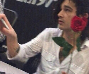 the 1975, matty healy, and rose image