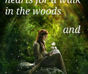 forest, healing, and meditation image