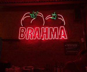 beer, green, and brahma image