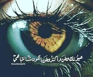 eye, eyes, and عسلي image