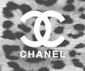 chanel, wallpaper, and leopard image