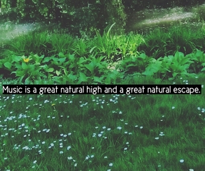 beauty, green, and music image