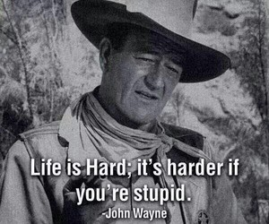 stupid, life, and hard image