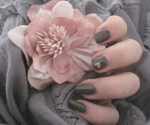 pink, grey, and flowers image