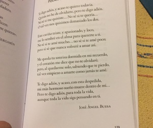 crush, frases, and poems image