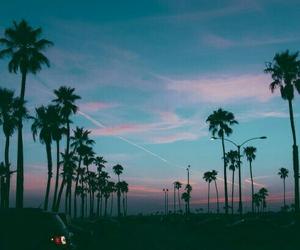 облака, природа, and пальмы image