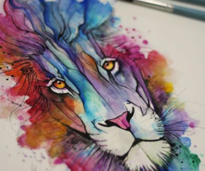 animal, colors, and lion image