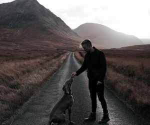 atmosphere, boy, and dog image