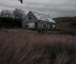 atmosphere, bird, and nature image