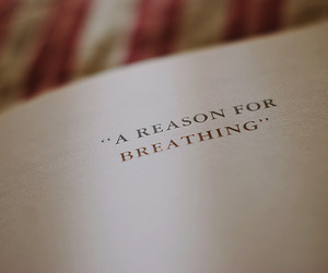 quote, book, and breathing image
