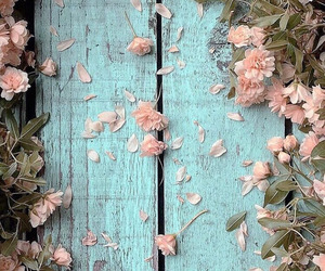 blossoms, flowers, and garden image