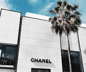 chanel, shop, and luxury image