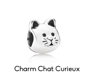 cat, charms, and jewelry image
