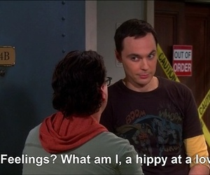 quotes, the big bang theory, and feelings image