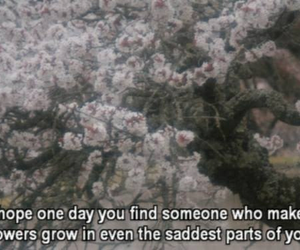 quote, flowers, and sad image