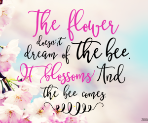 adventure, flower, and life image