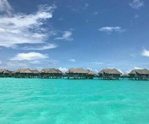 bahamas, beach, and summer image