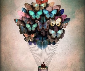 butterfly, art, and fly image