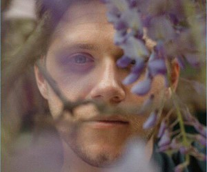 niall horan, flowers, and one direction image