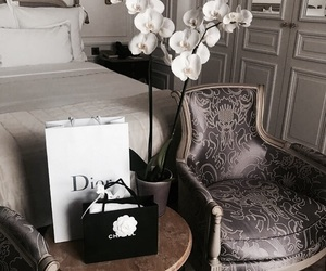 interior, design, and dior image