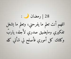 28, dz algerie, and اسلاميات اسلام image