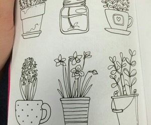 doodles, plant, and bullet journal image