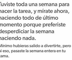frases, divertido, and tarea image