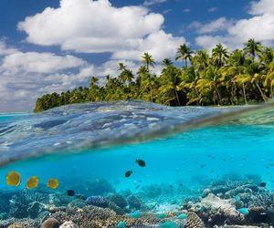 summer, beautiful, and ocean image