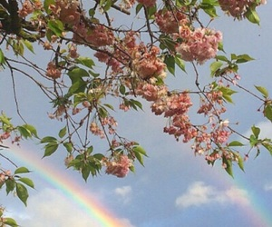 rainbow, flowers, and sky image
