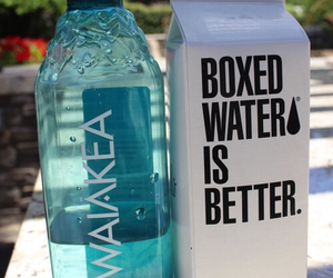 hawaiian, water, and boxed image