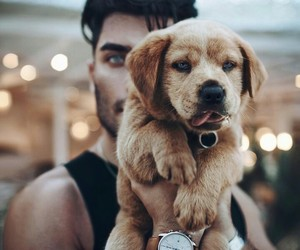 boy, cute, and dog image