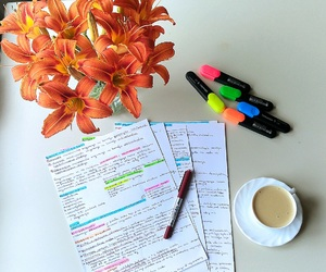 exam, flowers, and Law image