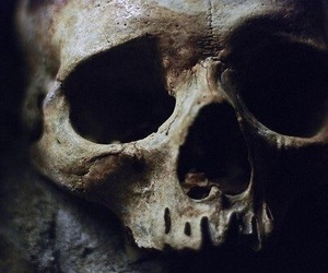 skull and death image
