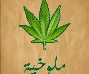 مخدرات, ﻋﺮﺏ, and ملوخيه image