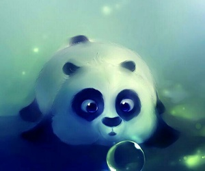 bubbles, panda, and wallpaper image